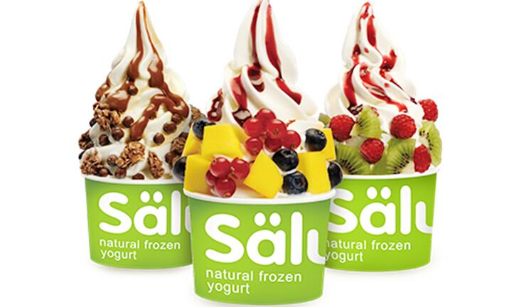 Salud欧洲冻酸奶