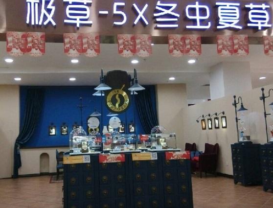 极草5X冬虫夏草