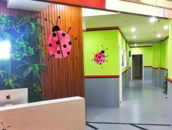 七星瓢虫艺术学校
