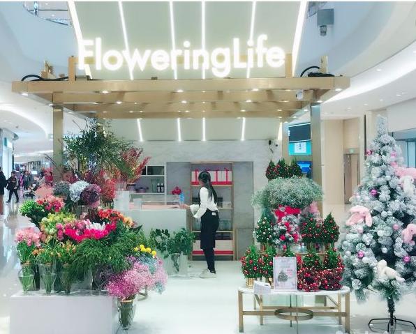 花邻FloweringLife