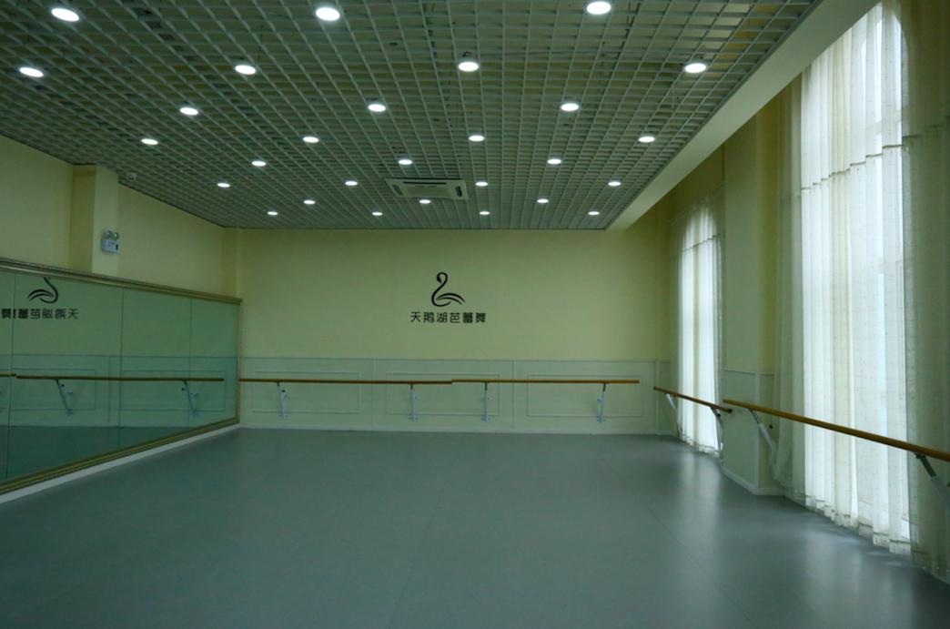 天鹅湖芭蕾舞