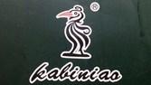 卡比啄木鸟