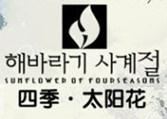 四季太阳花