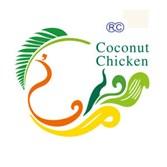 润园四季椰子鸡