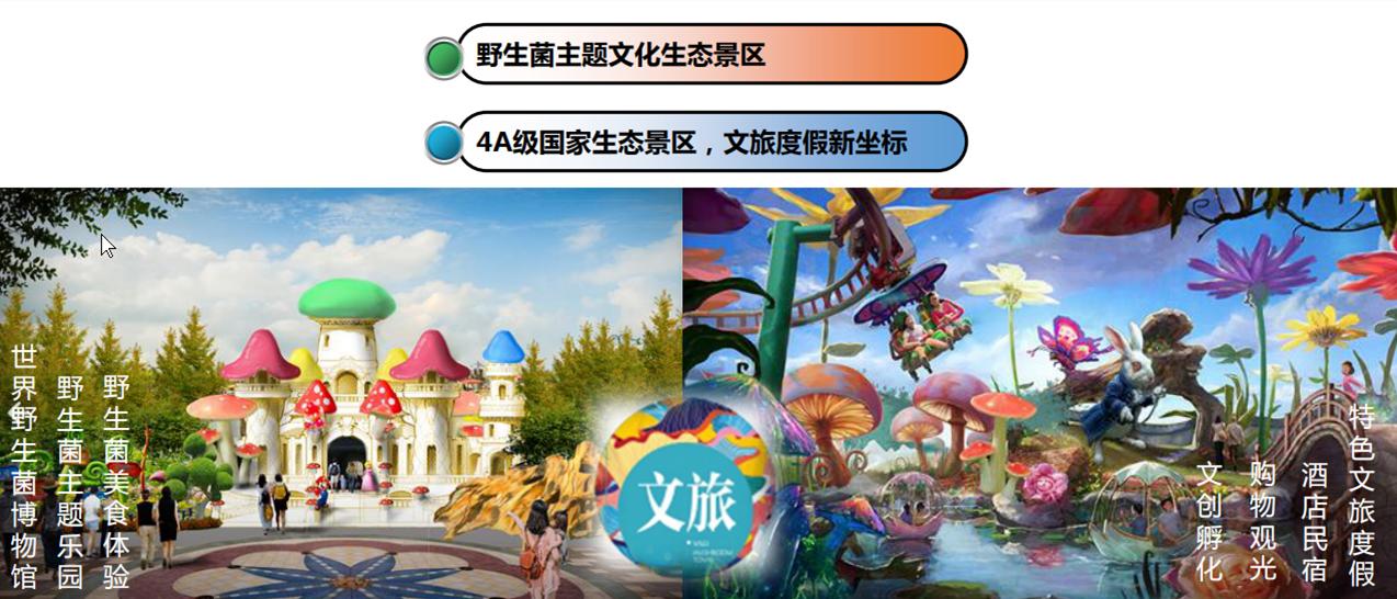 楚雄南华(国际)野生菌小镇