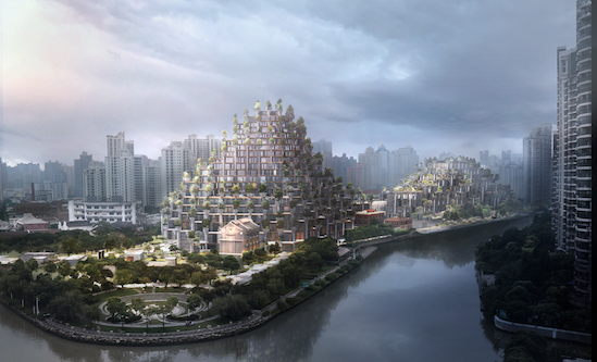上海天安千树