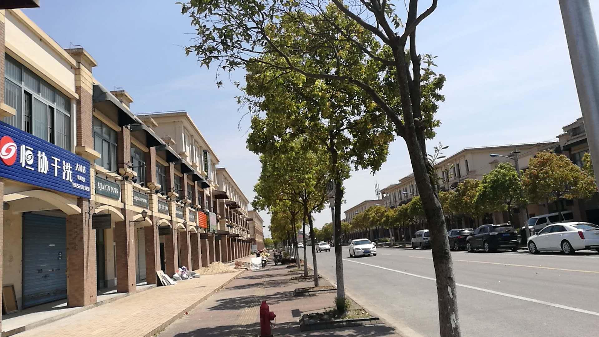 上海爱家新城